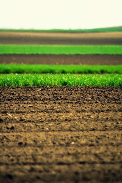 A fenntartható mezőgazdasági talajhasználatért dolgozunk