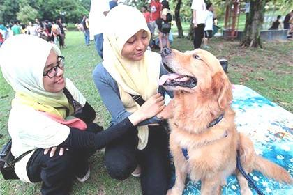 islam e i cani