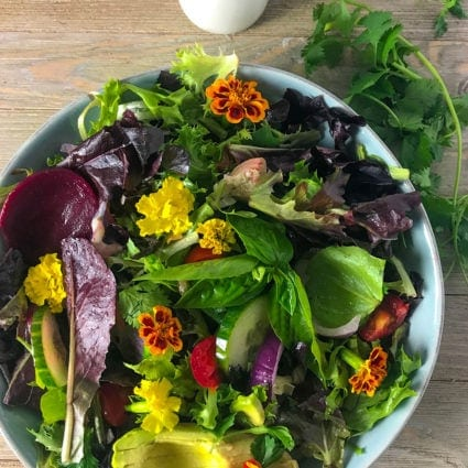 Spring Mix Salad Recipe