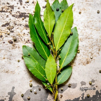 Bay Leaf Substitute