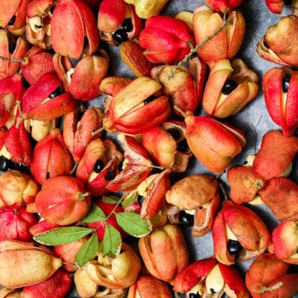 What Is Ackee