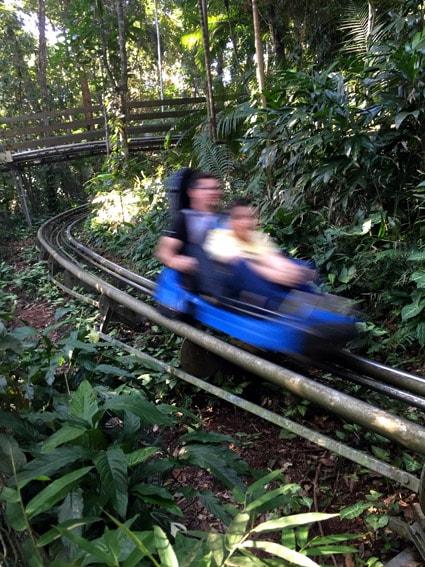 Youhooo - trenó de montanha que passa atinge 60 km/h
