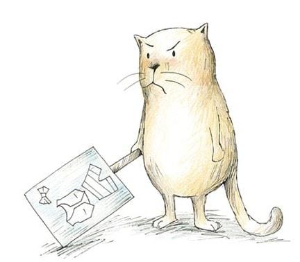 Claudia Rueda's Grumpy Cat
