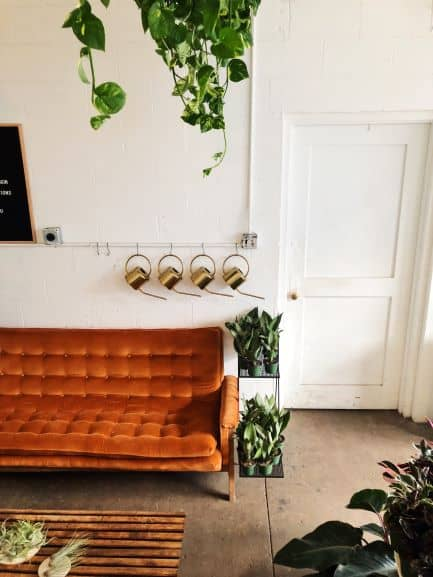 orange couch, side table full of plants, 4 copper watering cans hung on wall
