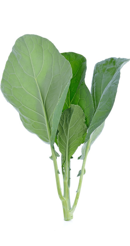 kale_transparent