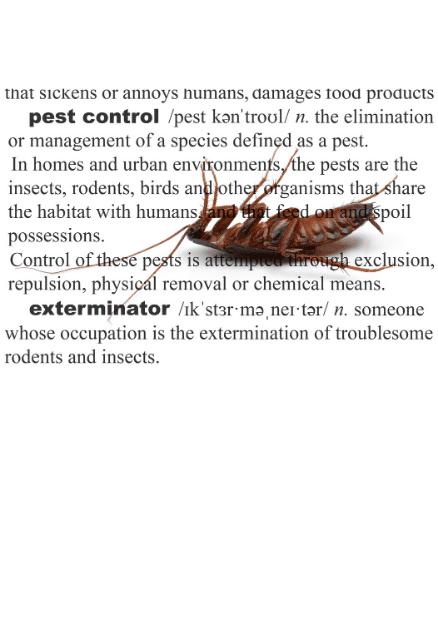 Shop Pest-Control