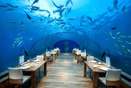 Ithaa Undersea Restaurant บนเกาะ Rangali Island