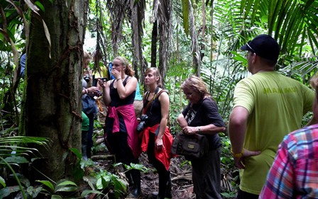 Shiripuno Lodge - Learning about the nature of the Rainforest during our hikes.