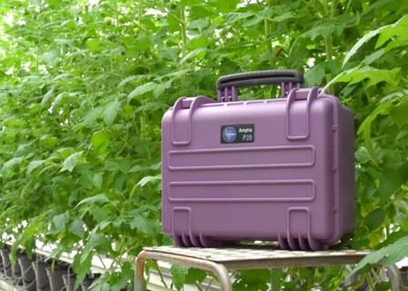 A picture of the new portable pollen analyzer Ampha P20 in a greenhouse with tomato plants