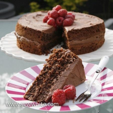 Sew White gluten free chocolate and raspberry cake 2