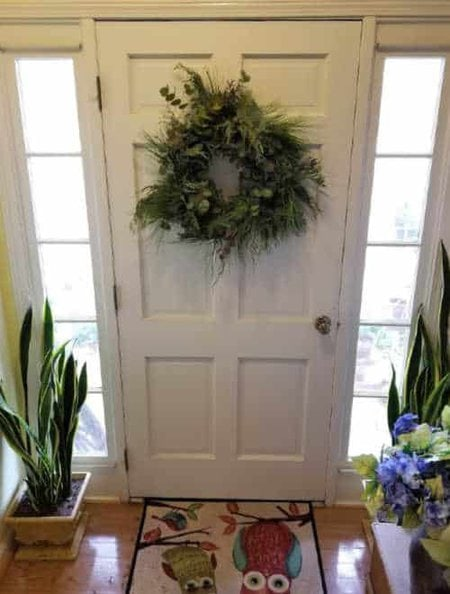 make your own evergreen wreath like this one made of cedar, pine and eucalyptus hanging on the white door flanked by pots of snake plant