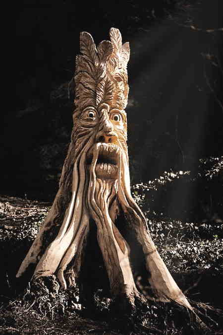 tree stump wood art with a wizard looking face carved into the stump.
