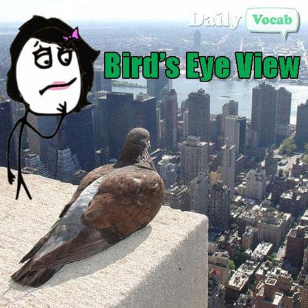 Bird's eye view idiom meme
