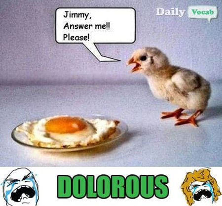Dolorous vocabulary word with picture