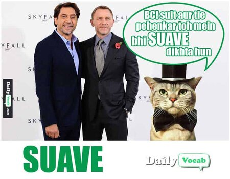 Suave English Hindi Dictionary with picture