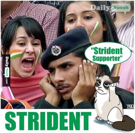 Strident English Hindi Dictionary