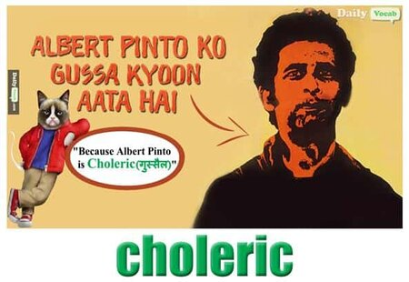 Choleric English hindi meaning