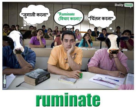 Ruminate English Hindi meaning