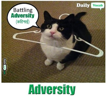 adversity English Hindi meaning