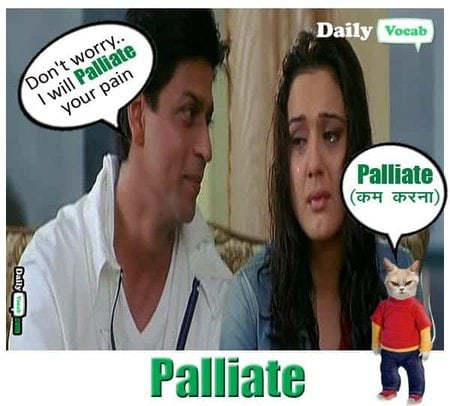 palliate English Hindi meaning