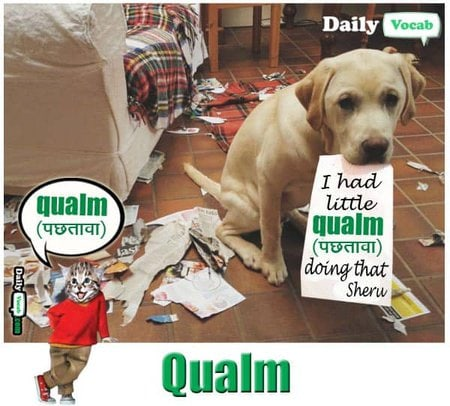 qualm English Hindi meaning