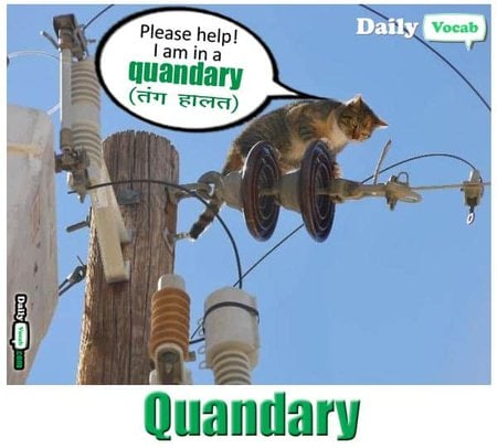 quandary English Hindi meaning