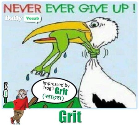 grit meaning in Hindi