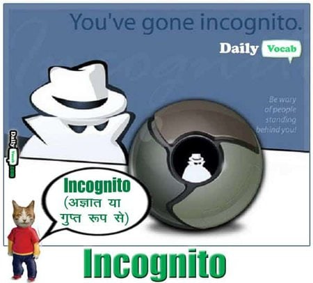 incognito meaning in Hindi
