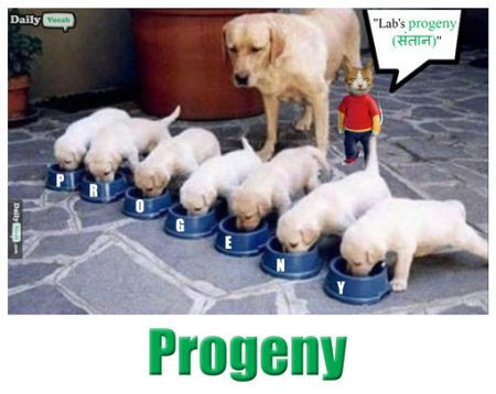 Progeny meaning in Hindi