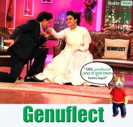 genuflect meaning in Hindi