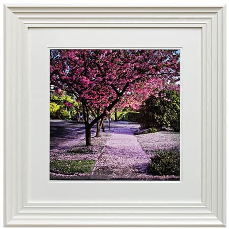 Blossom tree II framed print from Complete Colour