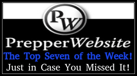 Top 7 Articles on Prepper Website