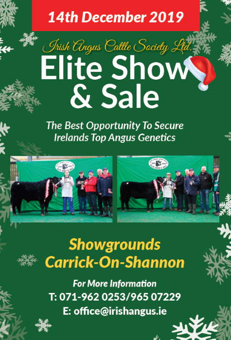 Irish Angus Elite Sale & Show 2019