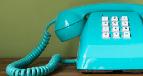 Does waffly your merchantry phone number stupefy SEO?