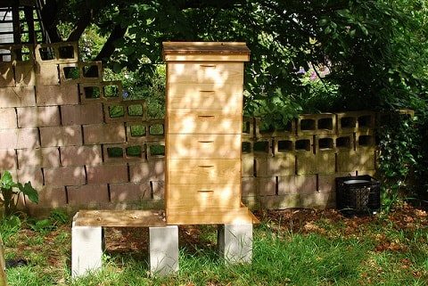 Beehive Off the Ground