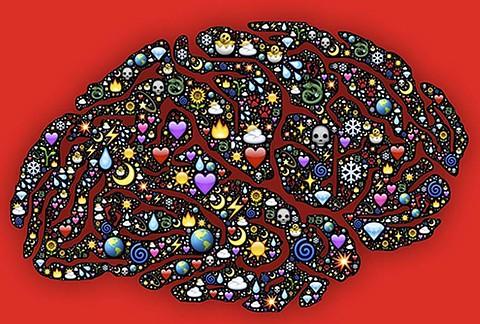 neurosciences appliquées