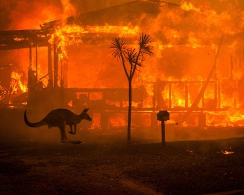 Incendies en Australie