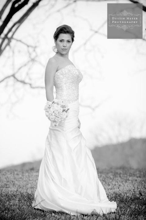 gorgeous black and white bridal portraits by austin texas wedding photographers