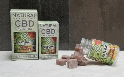 CBD Gummy Squares