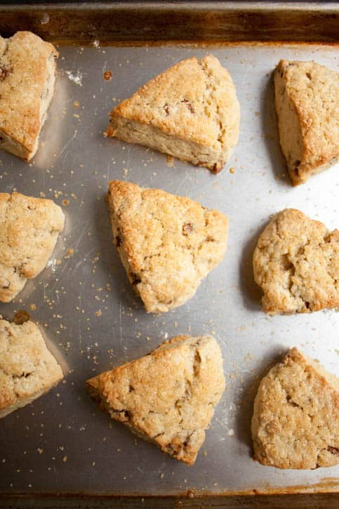 Freshly baked Brown Sugar Butter Pecan Scones on a baking sheet from themerchantbaker.com