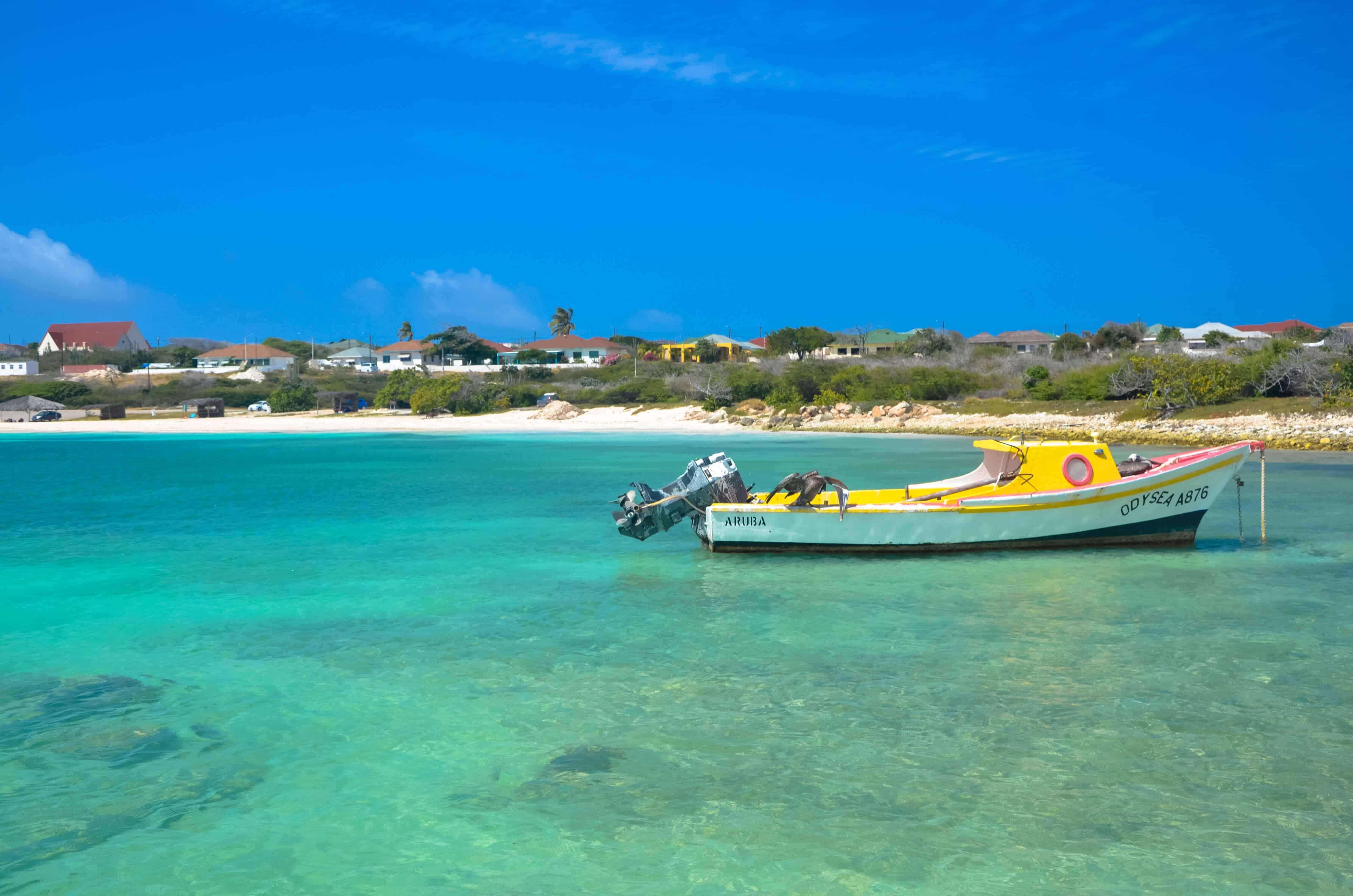 Baby beach Aruba Area
