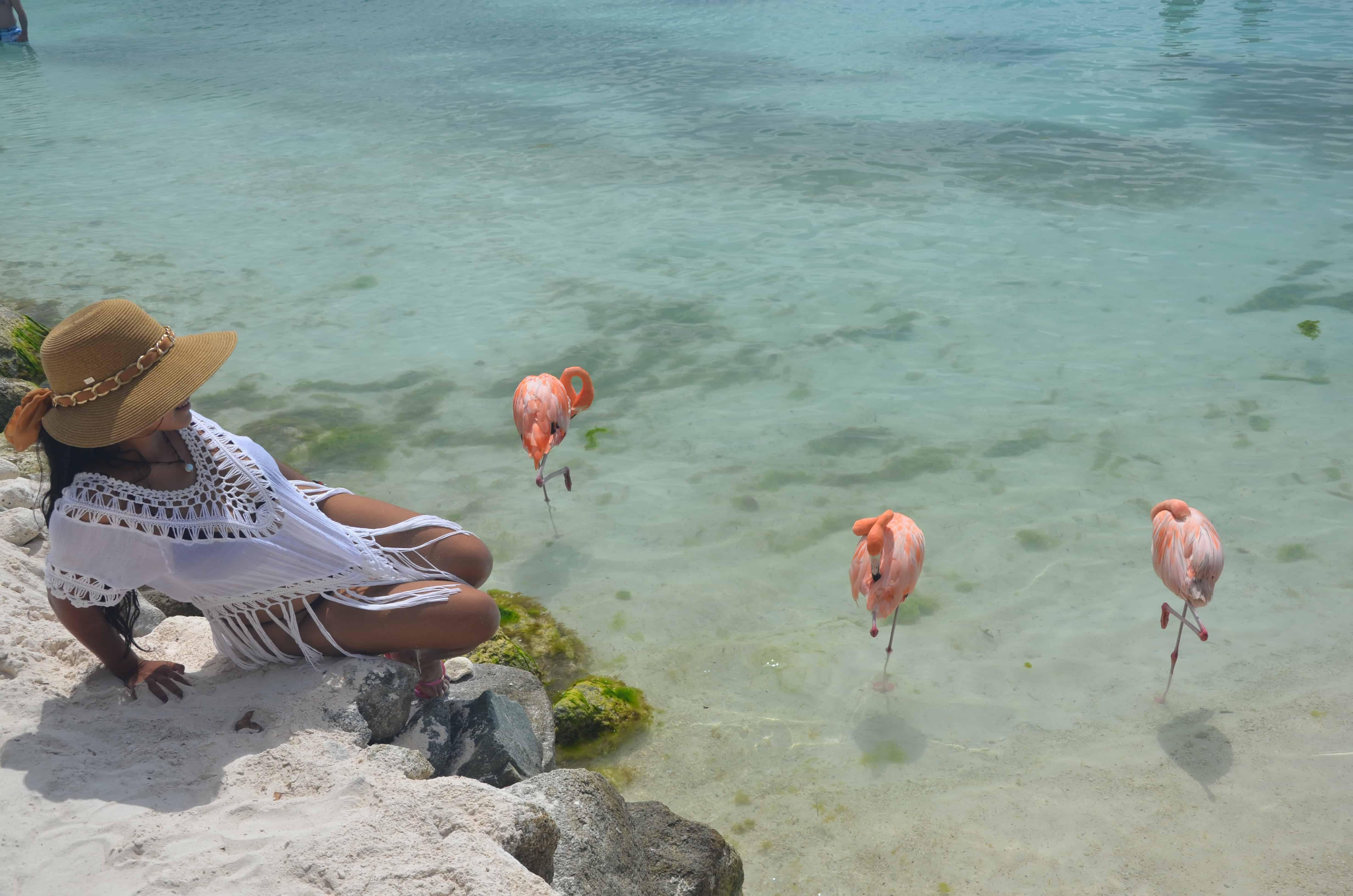 Playa flamingo Aruba como llegar ?