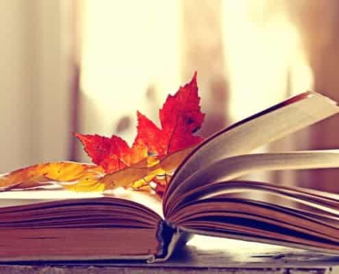 Buchempfehlungen Therapie