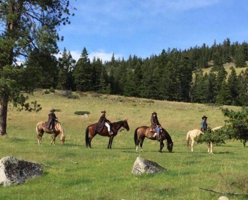 Cariboo Trail ride