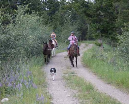 trail ride in Spring