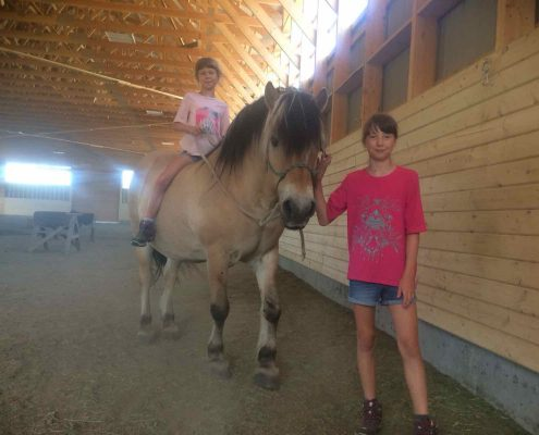 girls in love with Fjord horse