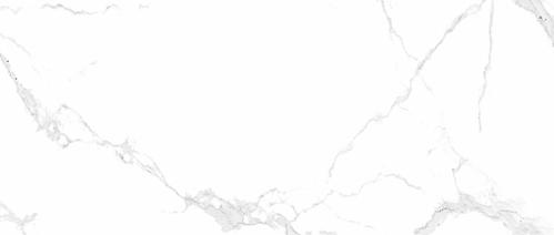 Carrara Gloss (1200 x 600)