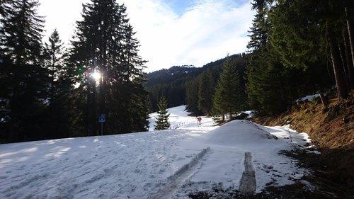Bodensee Umrundung Rad Tarp