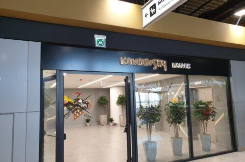 Бизнес зал Кандинский