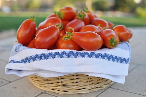 Verse tomatensaus